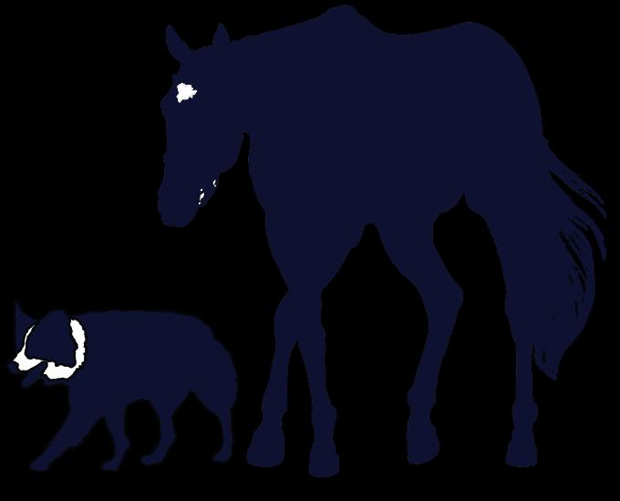 COGSWELL VET logo flip dropshadow